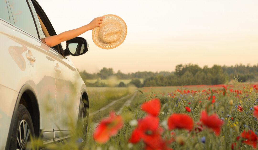 Summer Auto Body Repair Needs